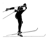 Skate Gunda Sv